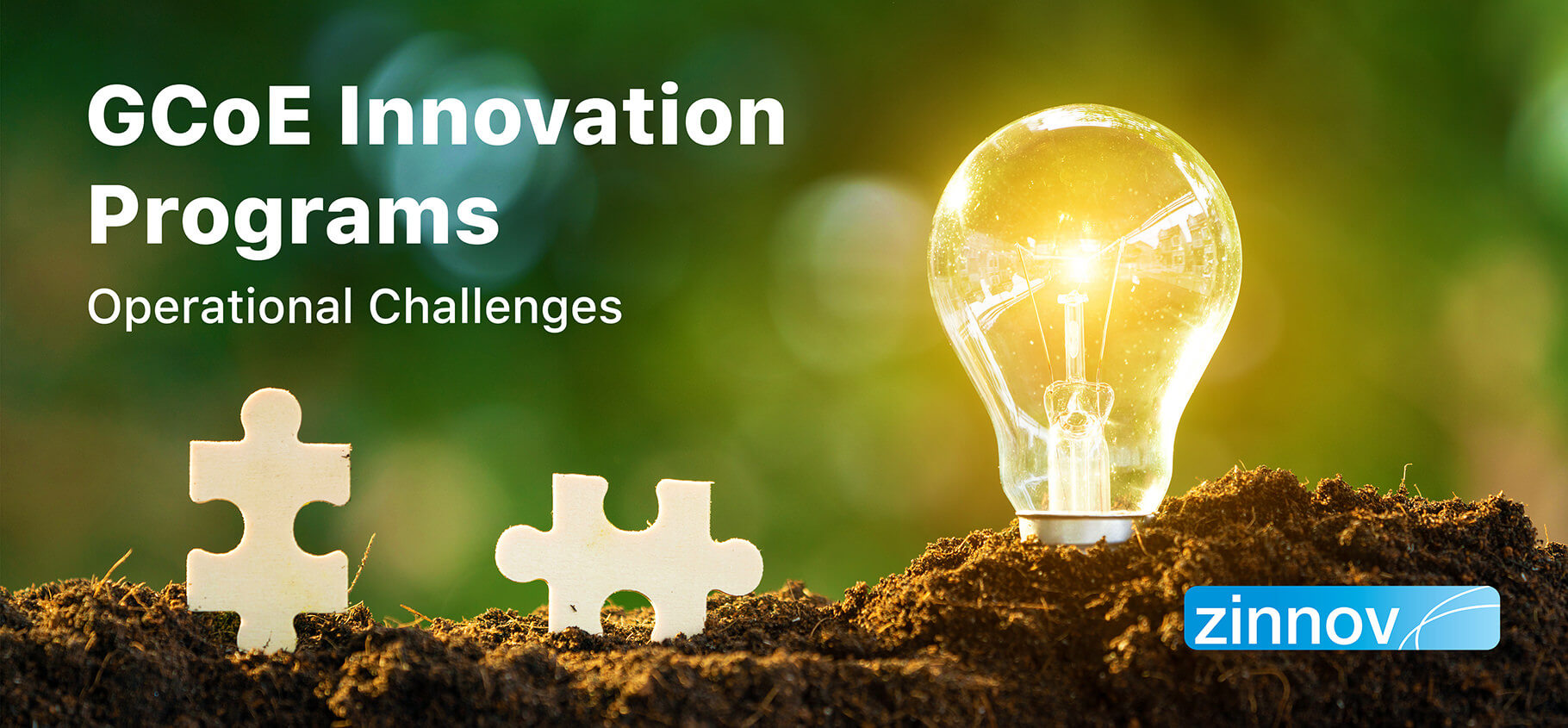 GCoE Innovation Programs: Turning Challenges Into Opportunities (Part II)