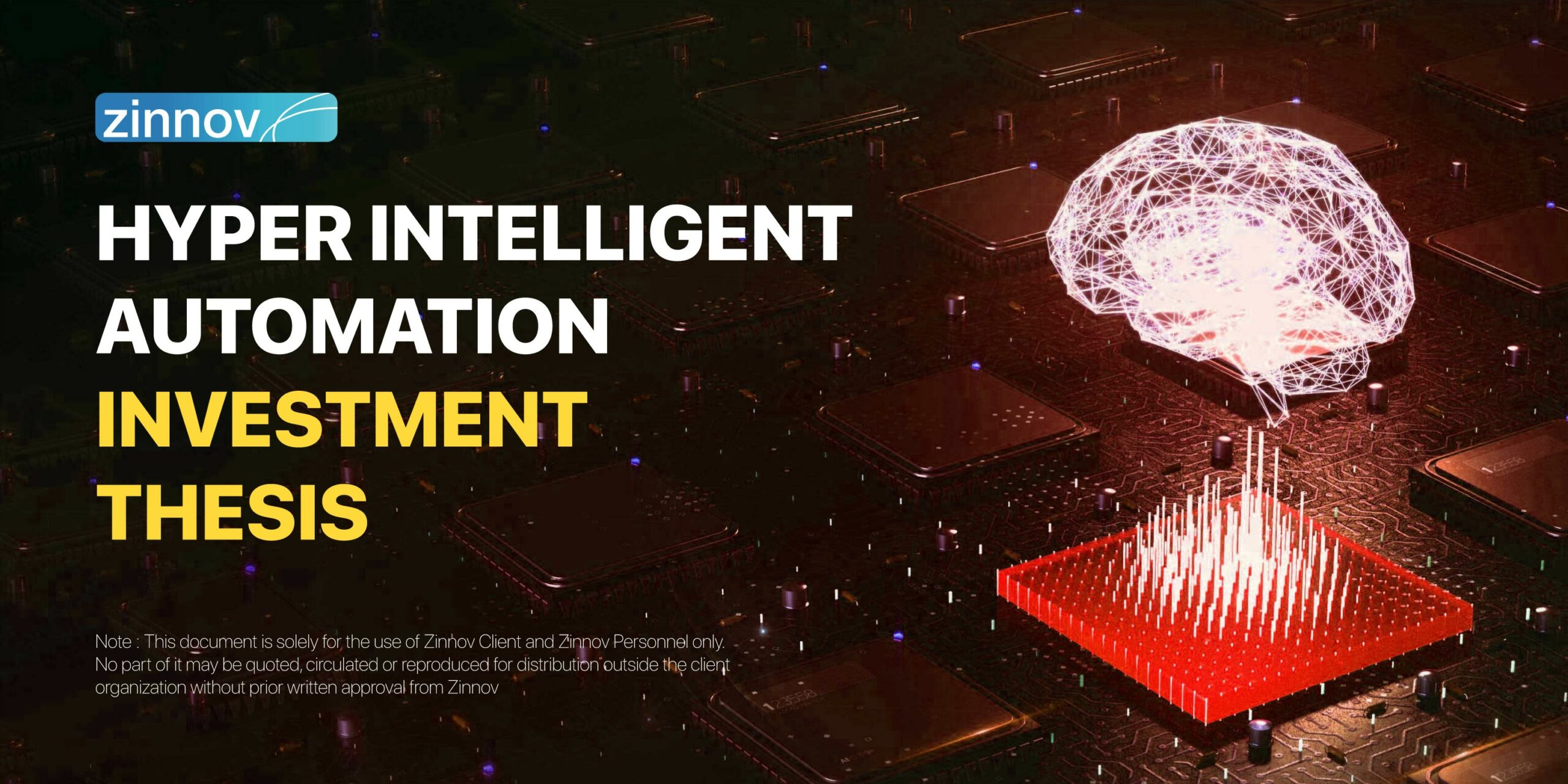 Private Equity investment thesis for Hyper Intelligent Automation